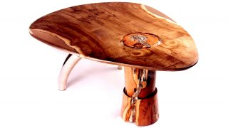Tulip And Bronze Table