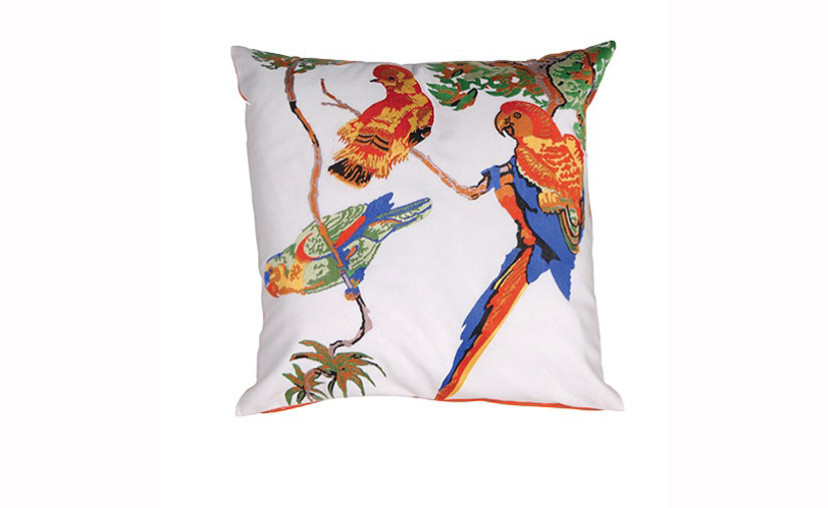 Pair Of Parrot Cushion Covers With Free Delivery